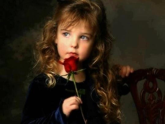 This Precious Rose...